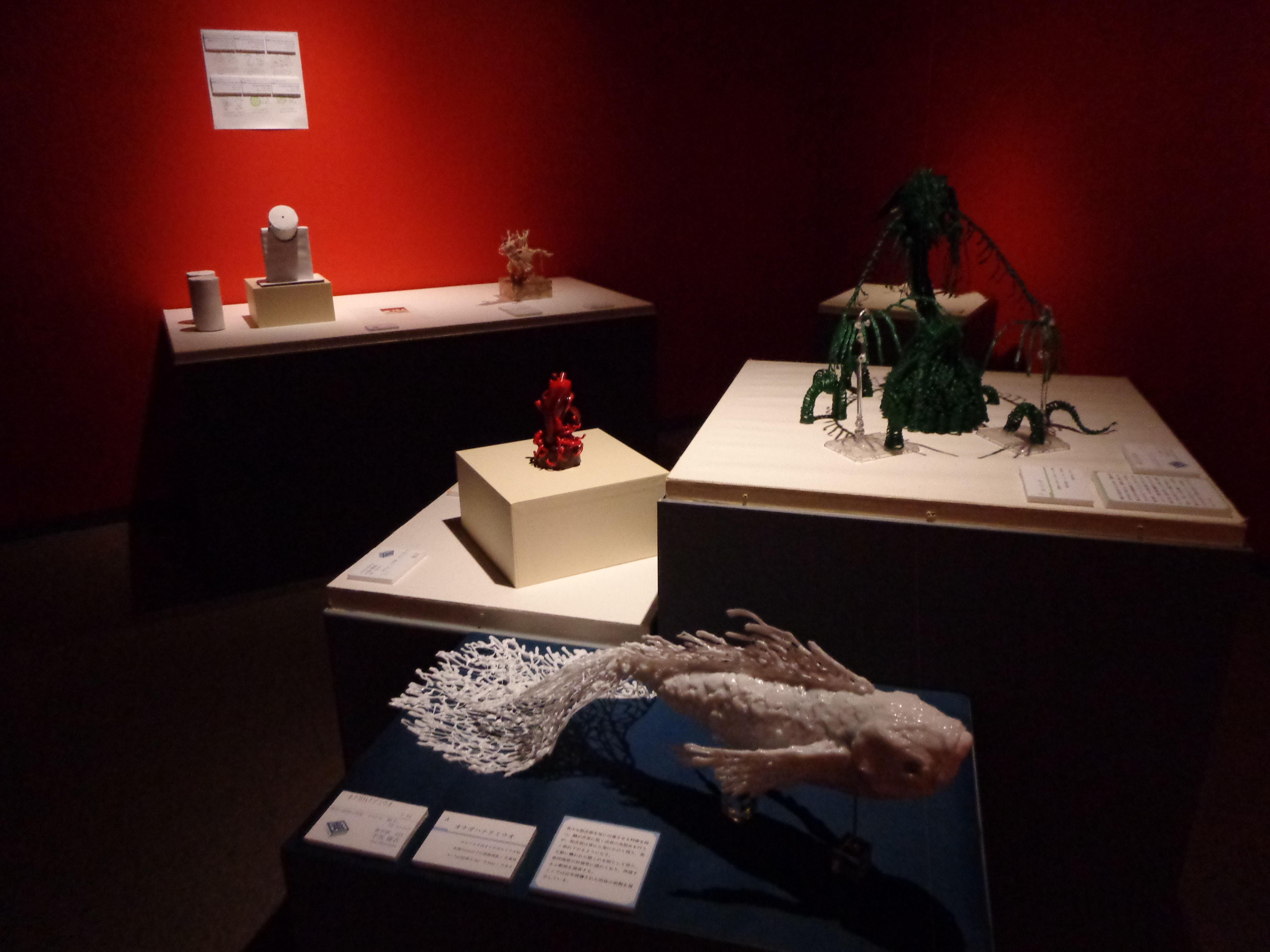 「生態園」の展示